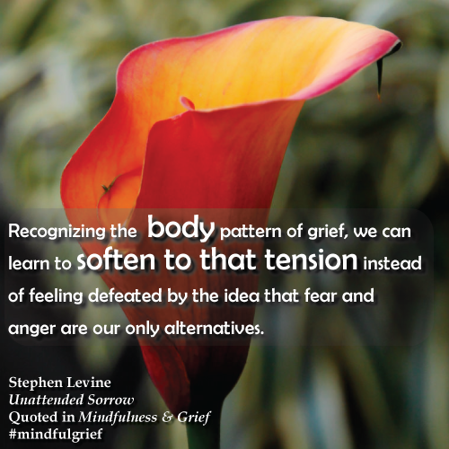 Grief Quote | From Mindfulness & Grief by Heather Stang